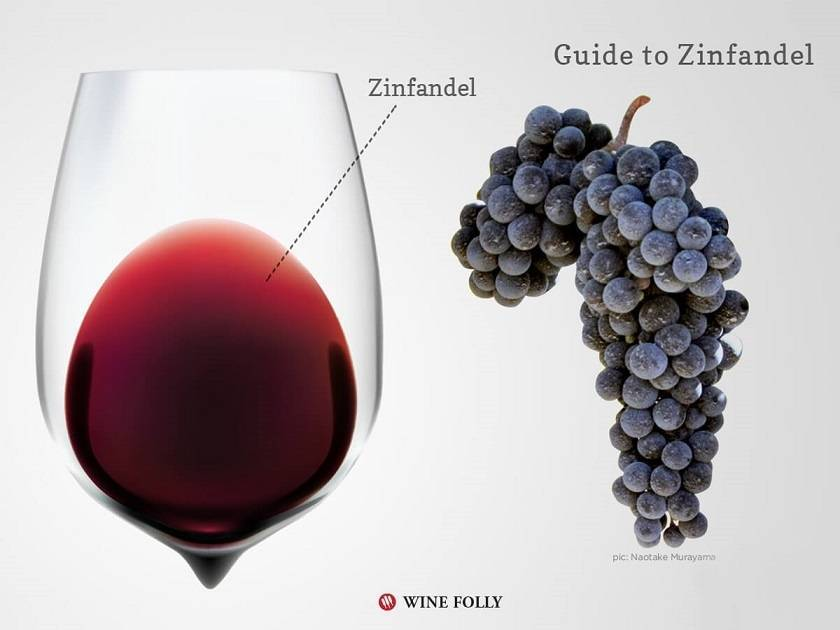 Discover california wines: zinfandel - pro-insider.ru