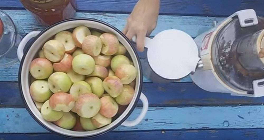 Как осветлить яблочное вино домашнего приготовления