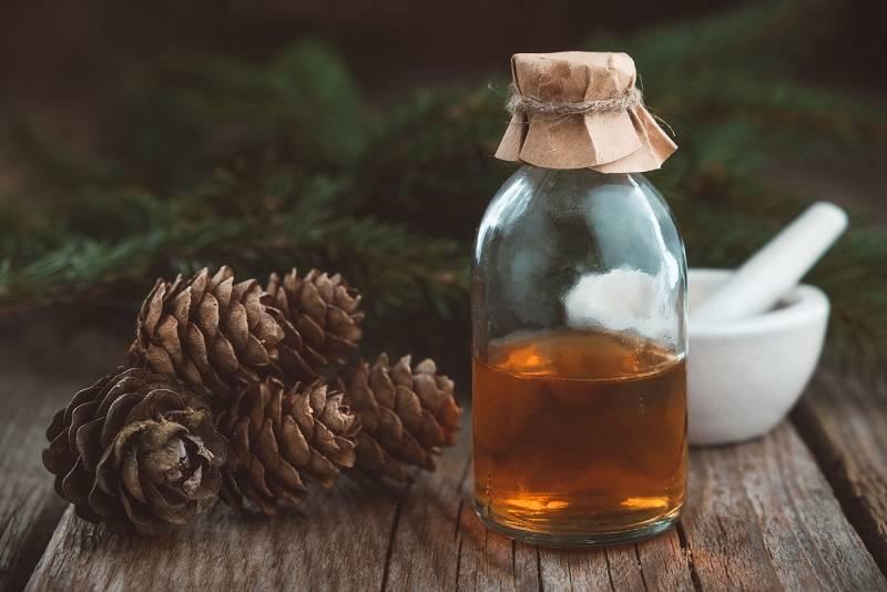 Польза и вред сосновых шишек, лечебные свойства, противопоказания, отзывы