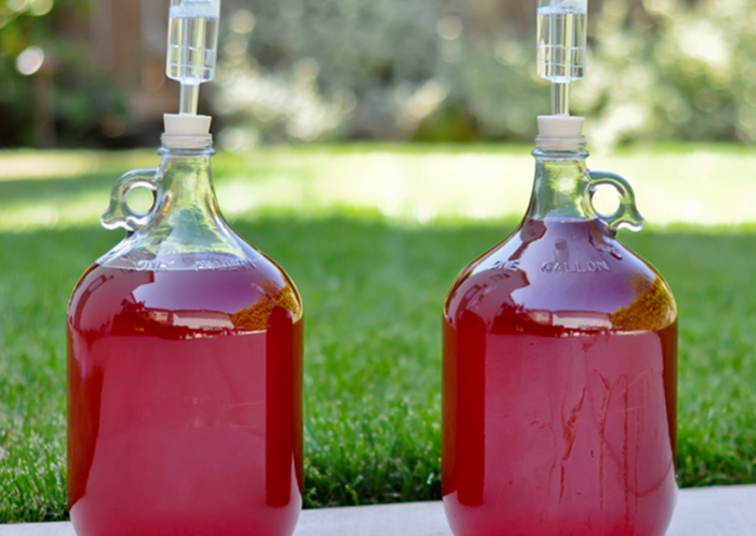 Брага из варенья: выбор и подготовка ингредиентов, пошаговая инструкция по приготовлению браги