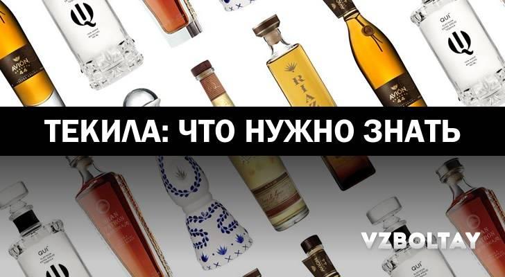 Текила – виды и свойства напитка; как сделать и пить; рецепты коктейлей