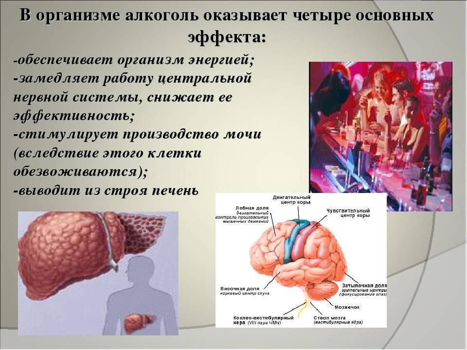 Этиловый спирт в организме человека и для чего он вырабатывает алкоголь