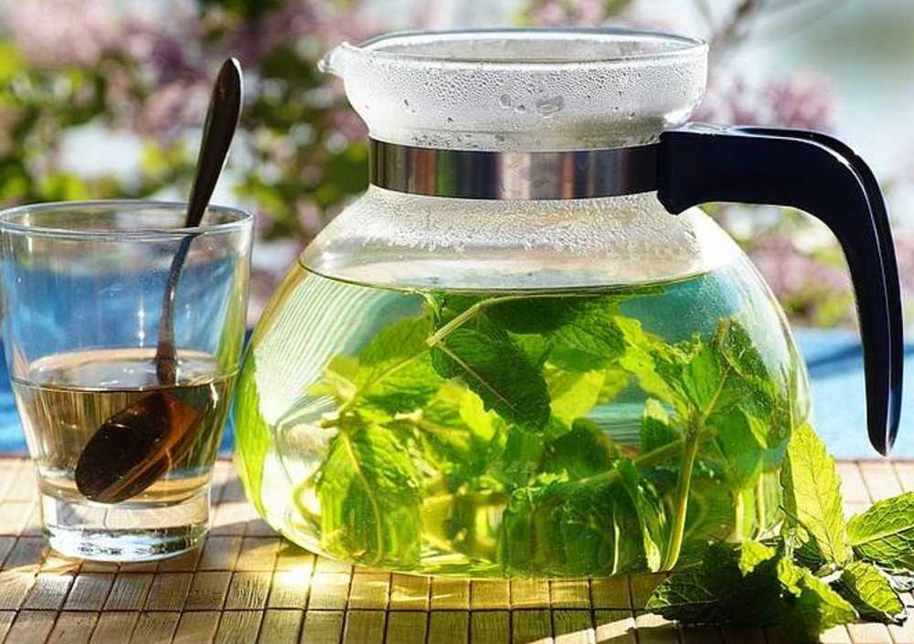 Как быстро вывести алкоголь из организма в домашних условиях?