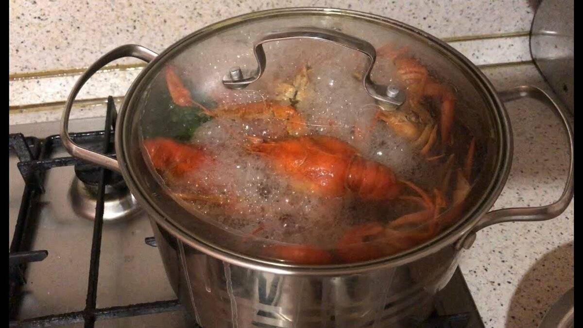 Рецепт варки раков с укропом