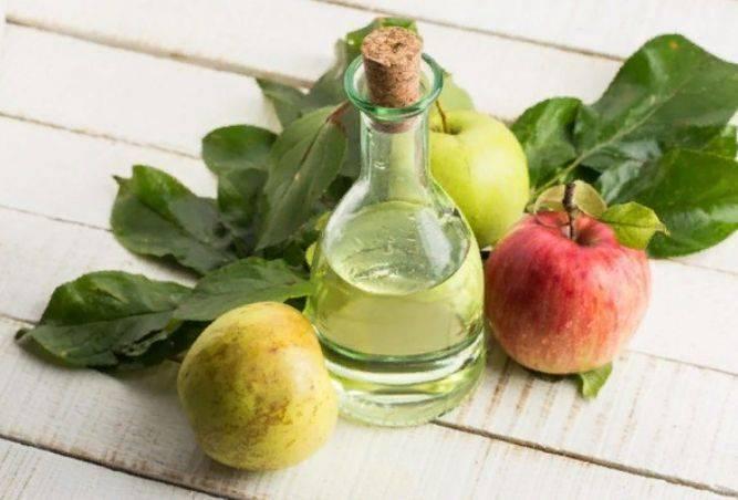 Виноградный уксус – польза, лечебные свойства и вред; рецепты, как сделать домашний