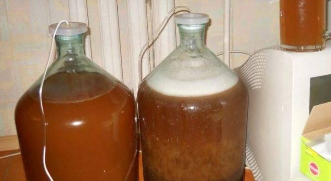 Как приготовить абсент на самогоне? три простых рецепта, обработка и хранение домашнего абсента | про самогон и другие напитки ? | яндекс дзен