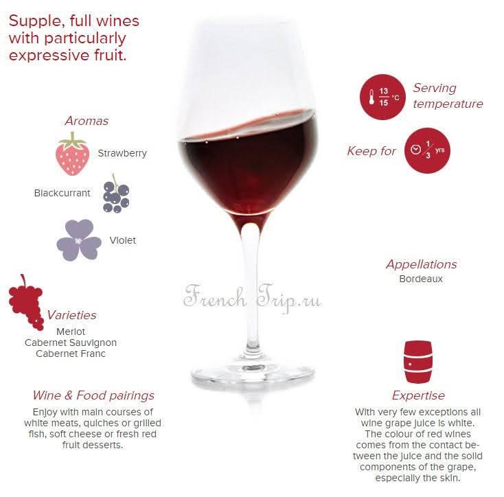 Самое дорогое, известное, старое вино в мире — обзор