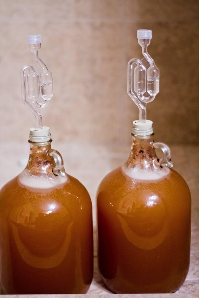 Как сделать медовуху в домашних условиях: проверенные способы и рецепты приготовления различных видов, особенности технологии