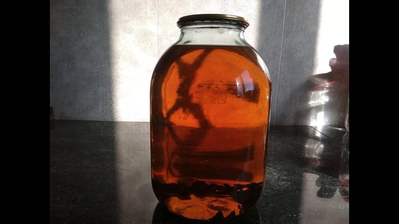 Самодельный домашний коньяк на дубовой коре, щепе и чипсах. свежие рецепты, подготовка и пропорции | про самогон и другие напитки ? | яндекс дзен
