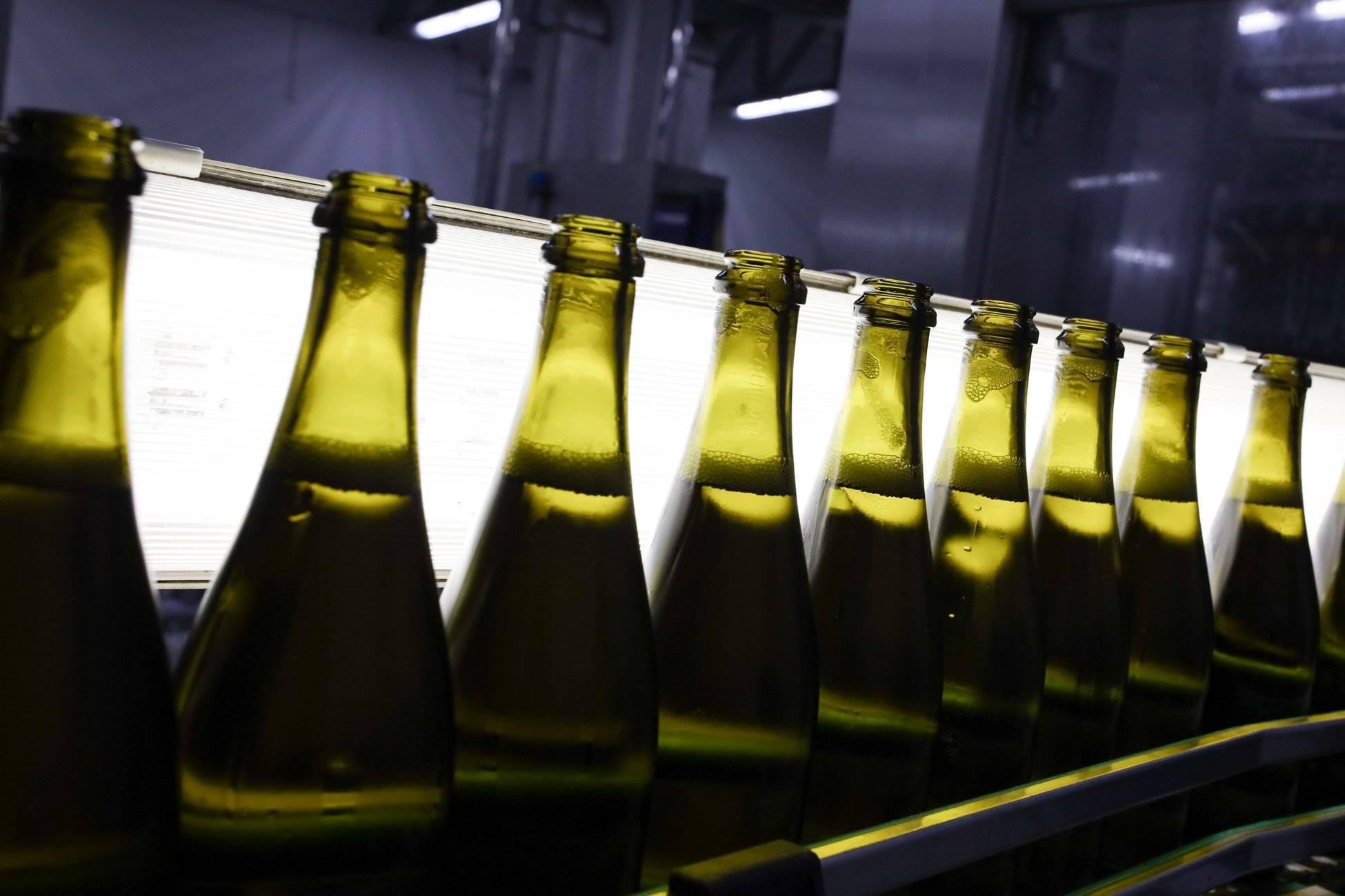 Как выбрать шампанское: объясняем по порядку