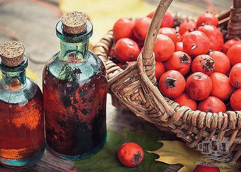 Как сделать настойку боярышника на водке?. рецепт настойки боярышника своими руками. в статье описывается способы приготовления настойки боярышника
