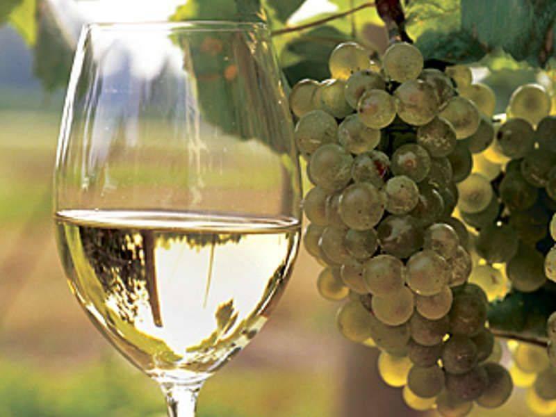 Что делать если лопнула перчатка на вине. узнайте, почему не бродит домашнее вино? сосуды для тихого брожения