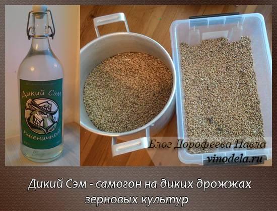 Зерновая брага на пшенице для самогона – лучшие рецепты