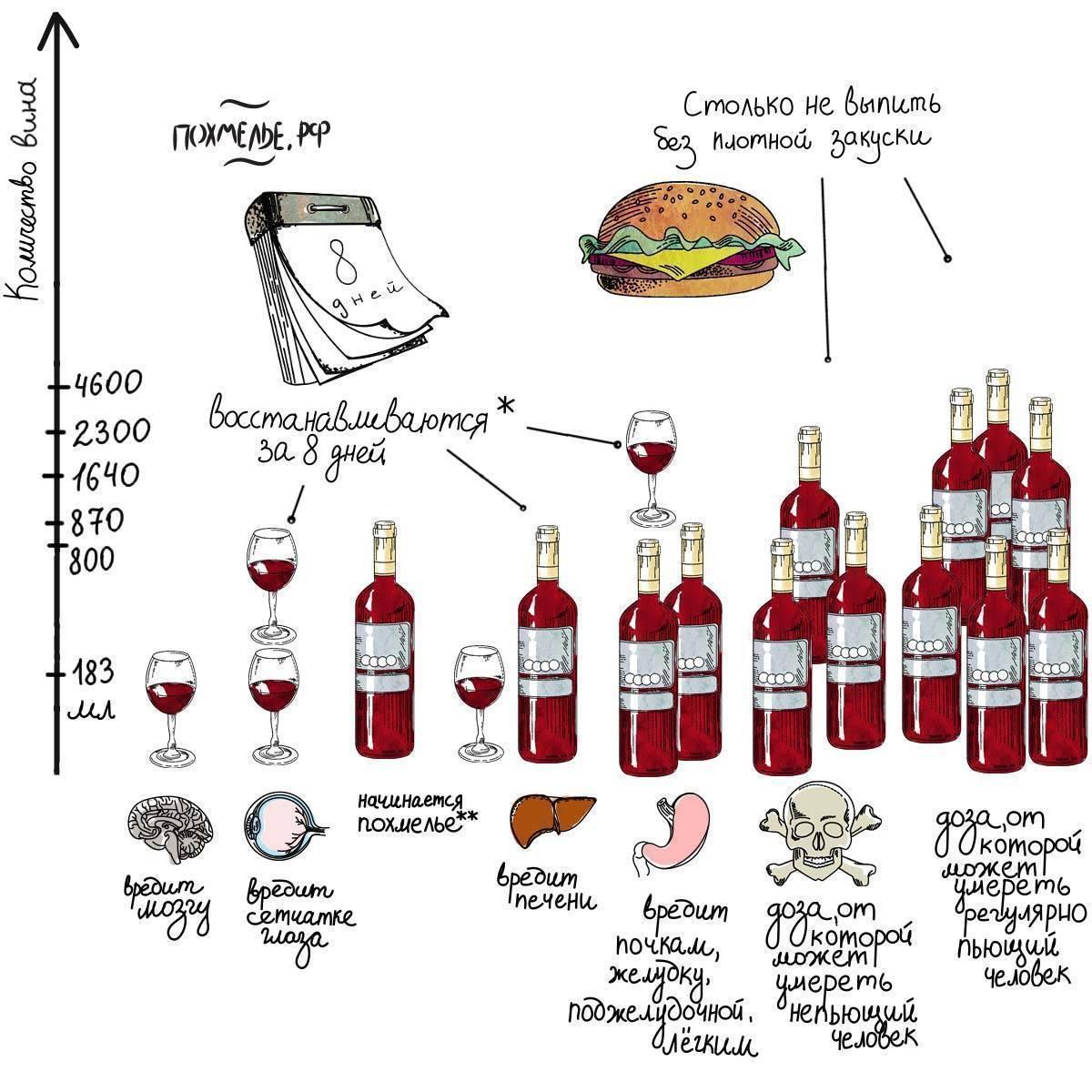 Изменения в организме по дням и месяцам после отказа от алкоголя