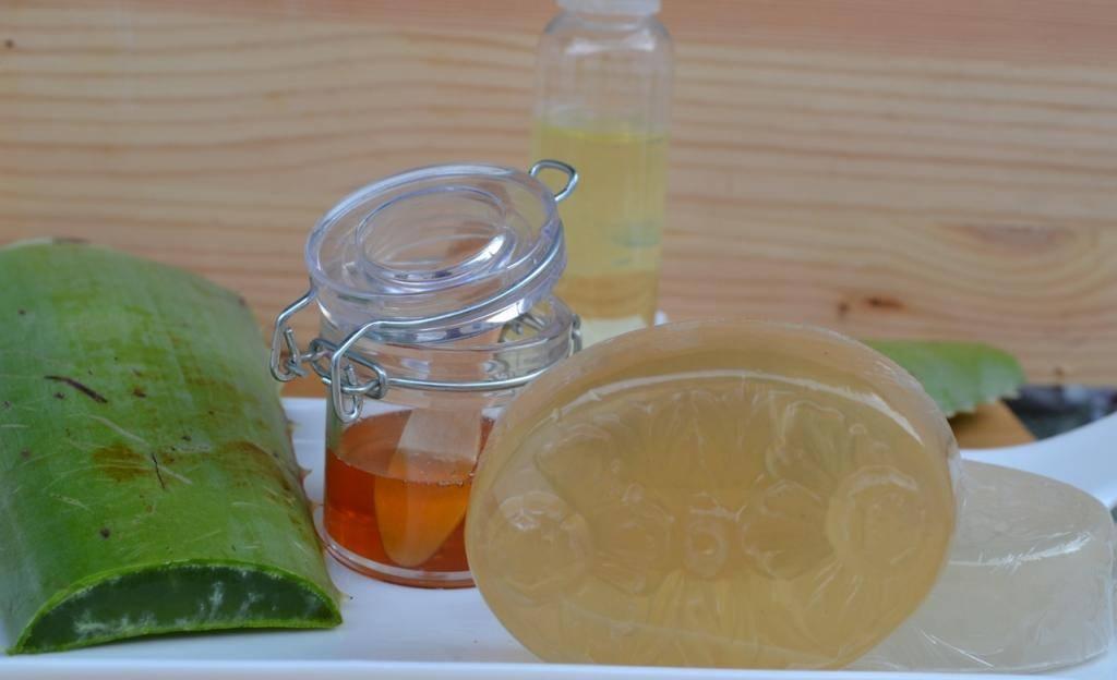 Эффективное народное средство — алоэ с вином. польза и рецепты, в том числе с медом