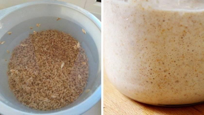 Как сделать самогон на пшенице, рецепты браги в домашних условиях