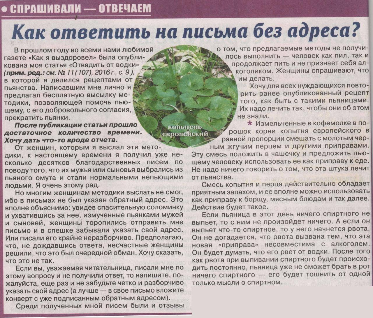 Копытень европейский: фото растения, применение от алкоголизма, отзывы, противопоказания