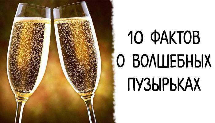 Шампанское: польза и вред для организма, польза и вред шампанского для женщин