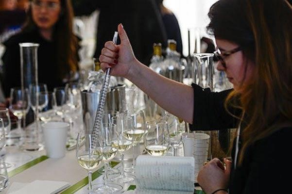 Вино бордо: особенности красного и белого bordeaux из франции, лучшие вина региона