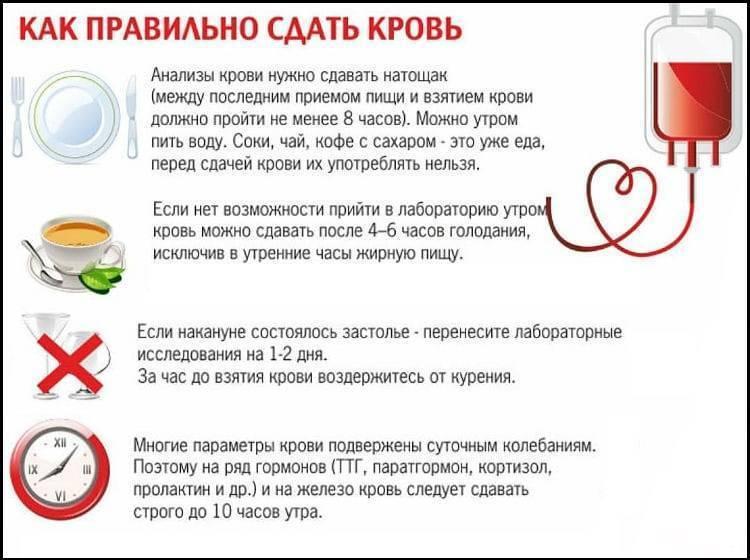 Влияние алкоголя на анализ крови. через сколько дней после алкоголя можно сдавать кровь?