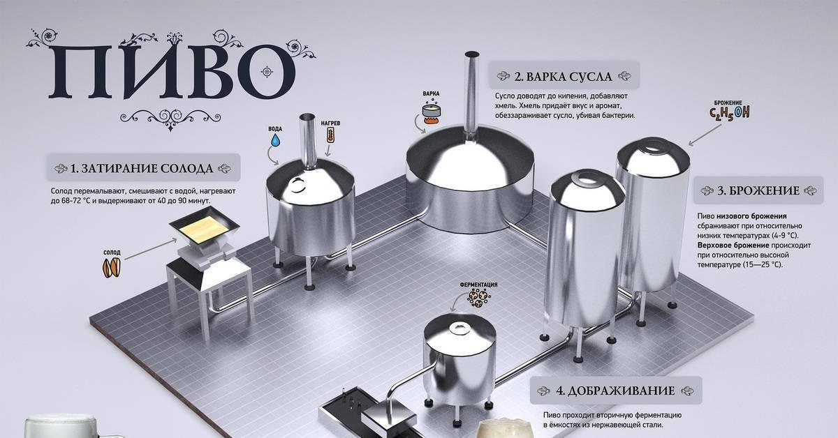 Какую домашнюю пивоварню выбрать, рейтинг лучших