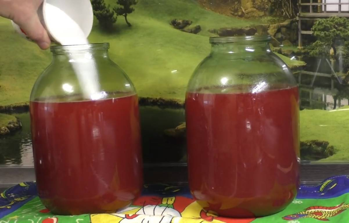 Основной и другие варианты приготовления вина из калины