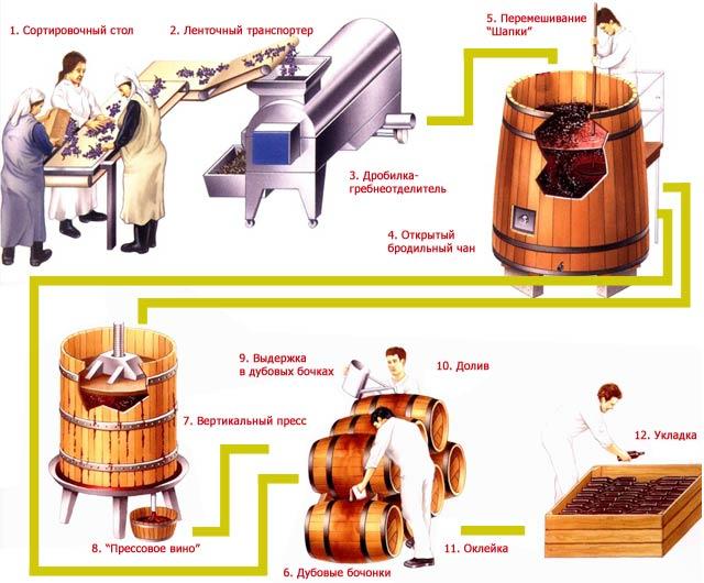 Производство и изготовление вина, карбоническая мацерация в виноделии