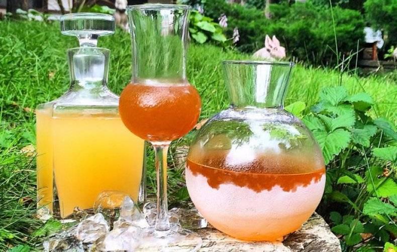 Ставленная медовуха – польза и рецепты приготовления