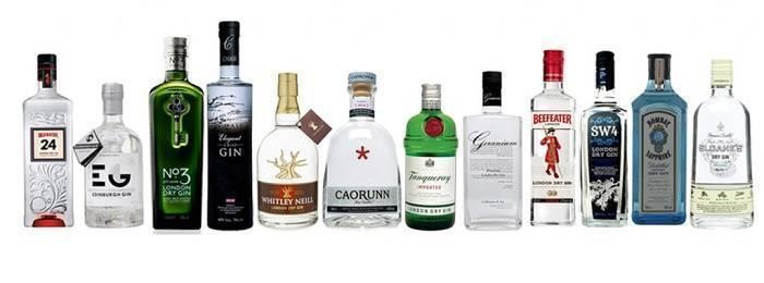 Как правильно и с чем пить джин: топ-10 советов | alko life