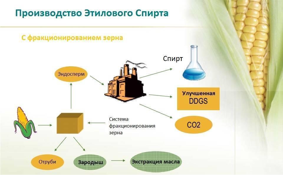 Из чего делают этиловый спирт и способы его получения