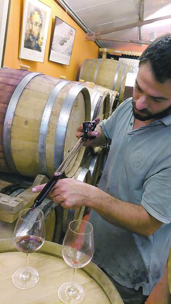 Какое вино попробовать в болгарии? (видео)