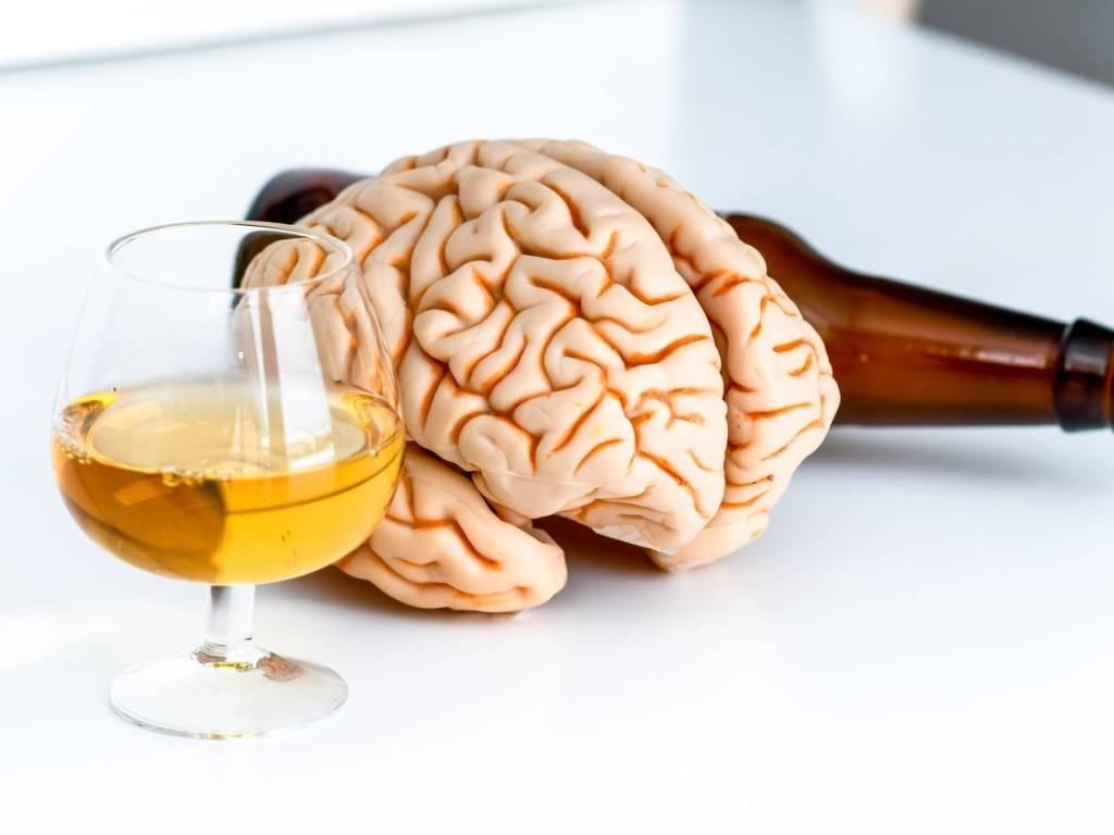Как влияет алкоголь на мозг и его действие на нейроны