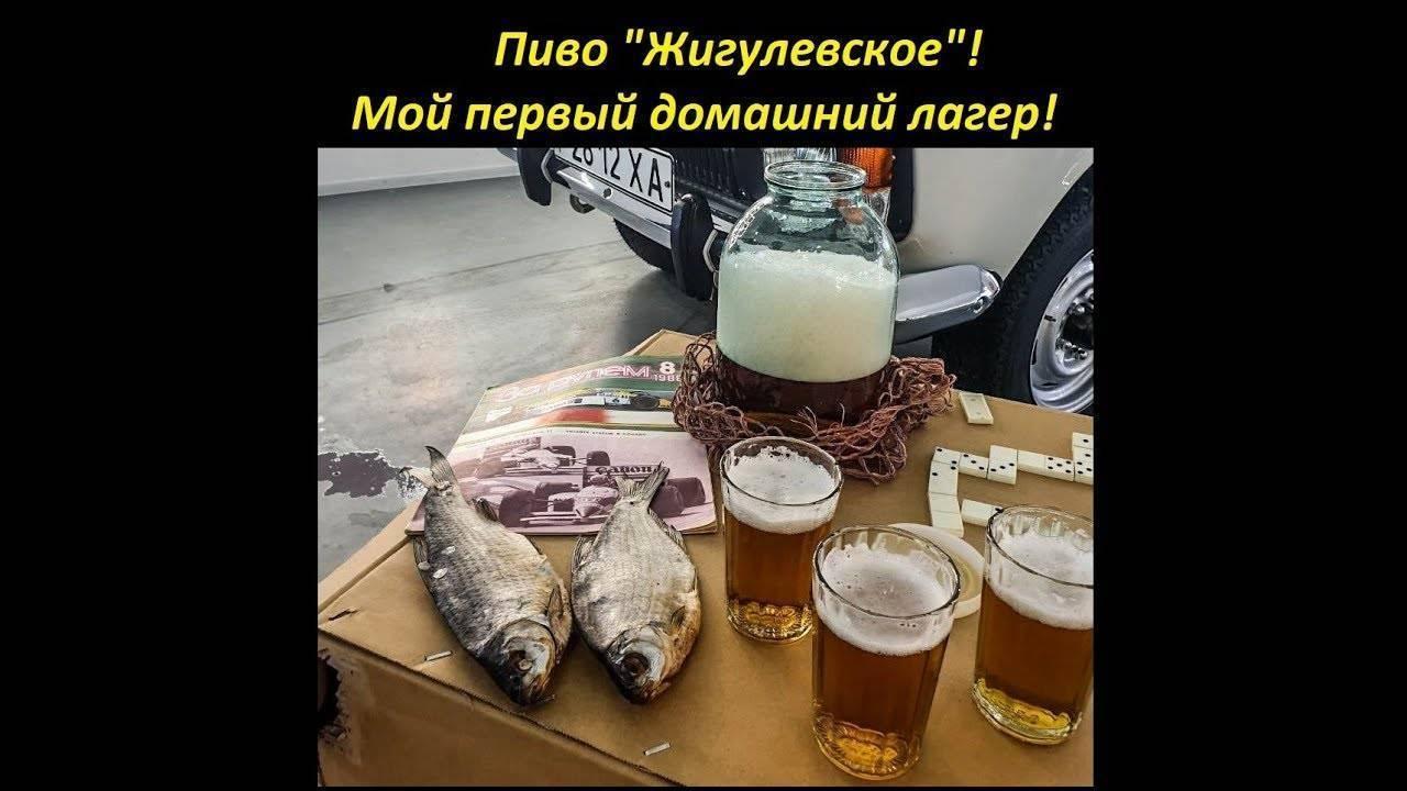 Рецепт приготовления жигулевского пива