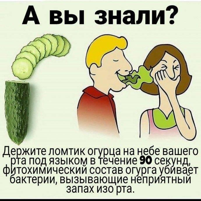 10 лучших способов избавиться от неприятного запаха изо рта :: polismed.com
