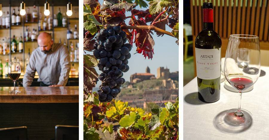 Испания — регионы виноделия в испании: испанские вина и виноделы