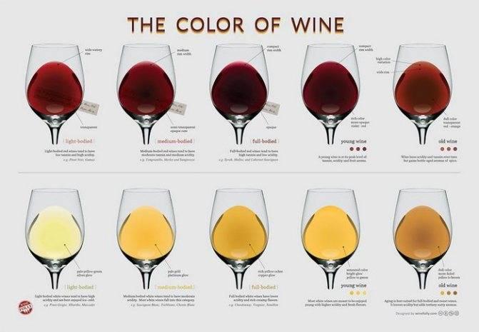 Сколько градусов в разливном шампанском | wine & water
