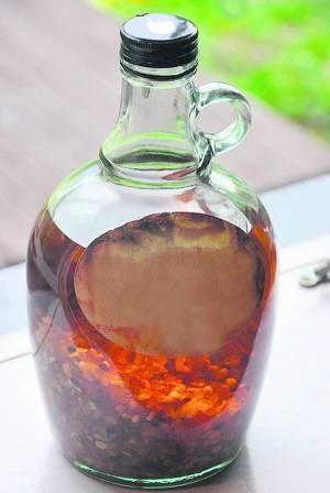 Настойка белой акации на водке, спирту: как применять и приготовить