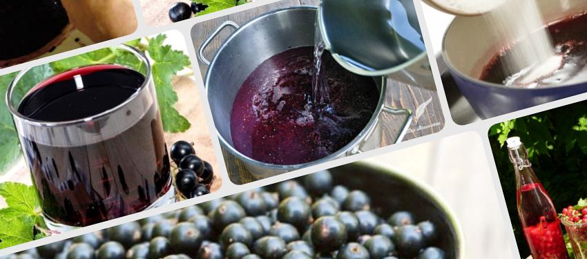Вкуснейшая смородиновая настойка на водке: черная жемчужина вашей коллекции
