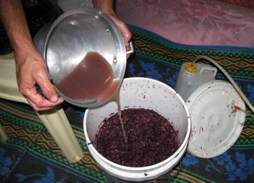 Коньяк из винограда: какие сорта выбрать, пошаговое приготовление