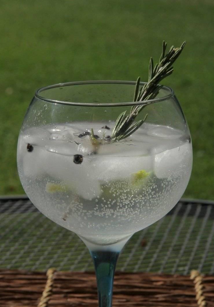 Рецепты приготовления коктейля джин тоник в домашних условиях