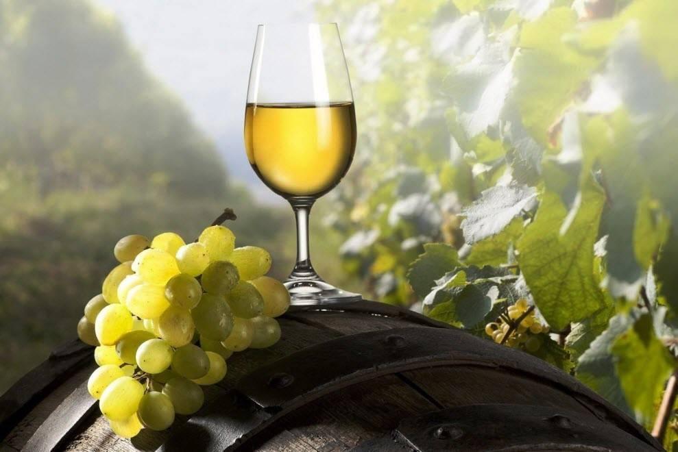 Не в водке счастье. польза и вред белого вина для мужчин