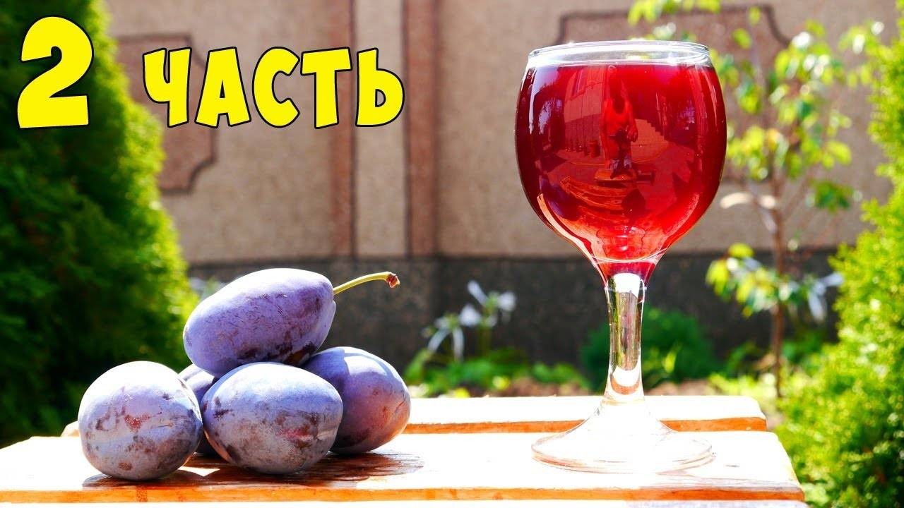 Вино из алычи в домашних условиях – 4 рецепта