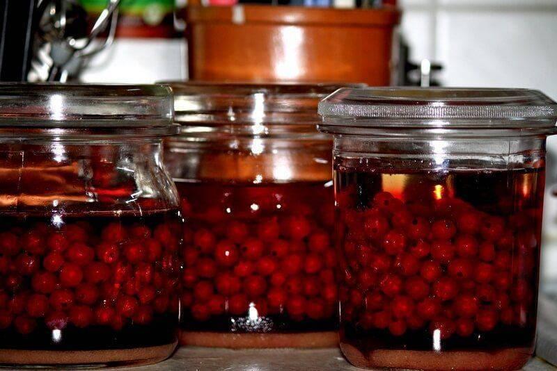 Наливка из черной смородины в домашних условиях: рецепт на водке и коньяке, как сделать настойку на спирту и самогон из красной ягоды
