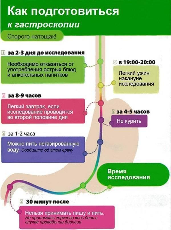 Гастроскопия желудка: как правильно подготовиться к исследованию
