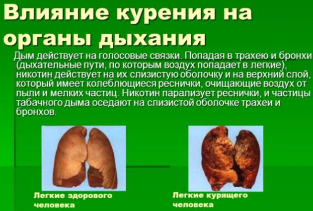Какое будущее у бронхов при курении?