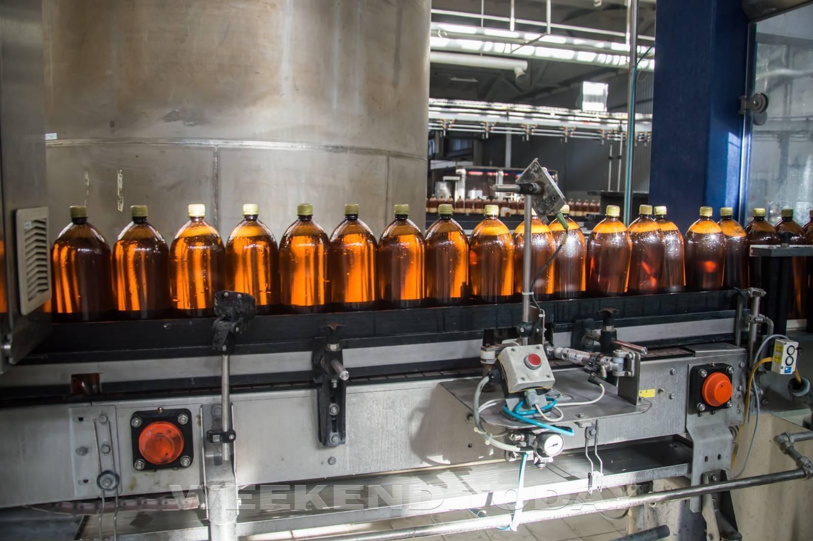 Как делают пиво: основные этапы производства пива, процесс пивоварения