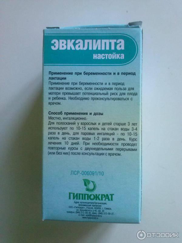 Эвкалипт: полезные свойства и применение в медицине