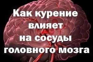 Как никотин влияет на мозг, сосуды и цнс?