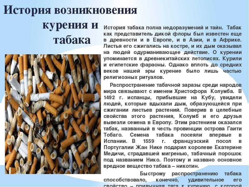 50 интересных фактов о табаке и курении — общенет