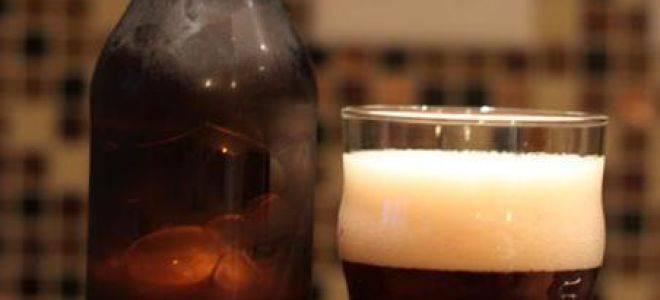 Ирландский эль: что это за напиток и чем он отличается от пива